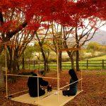 秋の蒜山高原 紅葉茶会 2015年11月