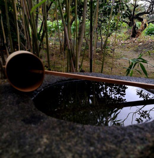 蹲 手水鉢(ちょうずばち)