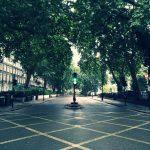 イギリス・ロンドンの街路樹 交差点からの眺め
