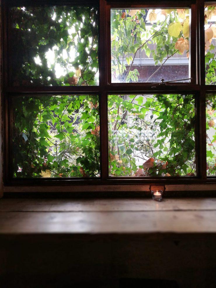 西窓の木漏れ日