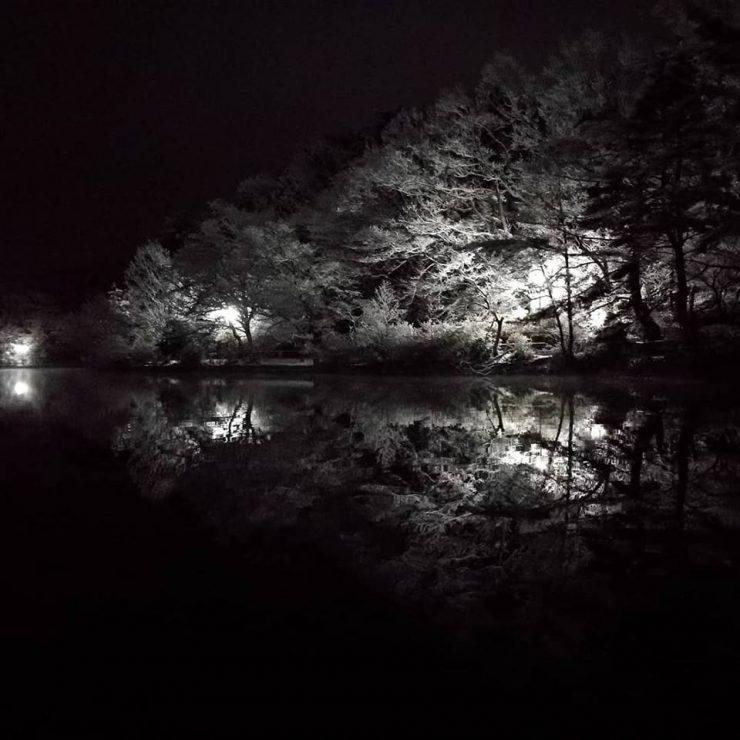 雪の夜の宝ヶ池