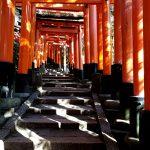 伏見稲荷大社 稲荷山の鳥居 光と影 京都