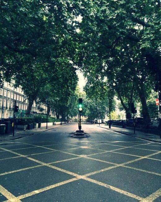ロンドンの街路樹