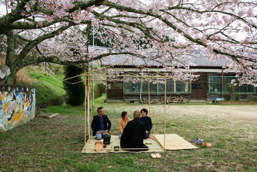 小学校で花見茶会 2016年4月 京都
