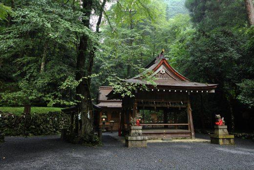 KYOTOGRAPHIE 京都国際写真祭 2020 特別プログラム 「貴船神社奥宮 茶会」
